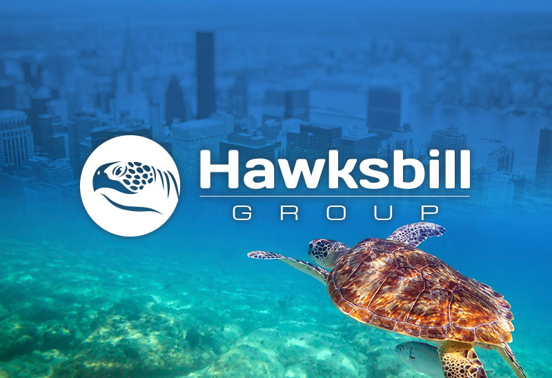 Hawksbill Group To Provide Strategic Counsel Access Industries And Around The Globe – New Advisory Firm Formed By Accomplished Executives