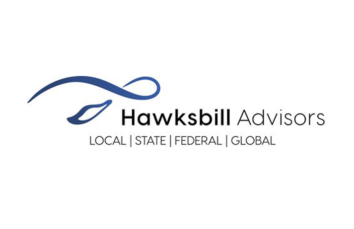 Consulting Firm Hawksbill Group Launches Hawksbill Advisors To Meet Client Needs In Public Policy, External Affairs